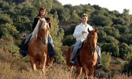 טיול סוסים בהרי יהודה