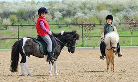 רכיבת סוסים לילדים ומבוגרים