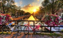 יולי-אוגוסט בכפר נופש בהולנד