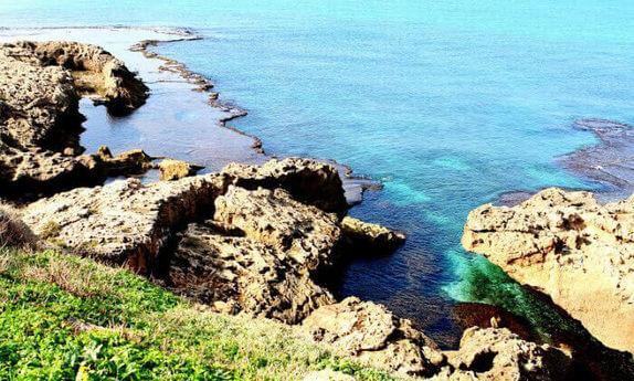 חוף נחשולים, כולל סופ