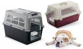 כלוב הטסה-נשיאה לכלבים וחתולים