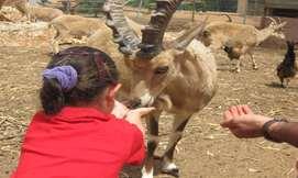 חוויה חקלאית לכל המשפחה