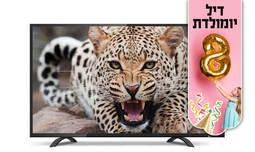 טלוויזיה peerless בגודל