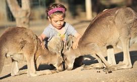 גן גורו, פארק אוסטרלי למשפחה