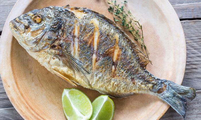 מסעדת בני הדייג באשדוד