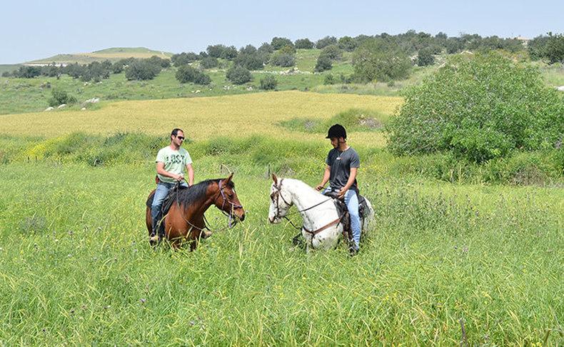 טיולי סוסים בחוות תעוז
