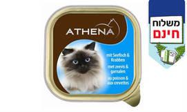 שימורי ATHENA לחתול