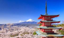חדש! חופשה בטוקיו, יפן